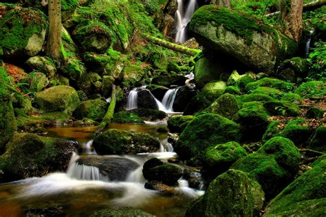 Nature landscapes waterfalls trees forest moss rocks