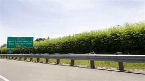 Mur Végétal Anti Bruit : le mur antibruit de la 440 ~ Premium-room.com Idées de Décoration