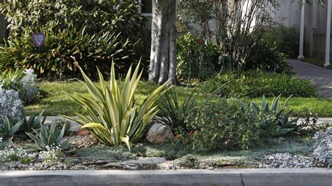 strip parkway angeles los parkways water curb exit guidelines safely convenience passengers inch call parts mistakes transforming wasting don these