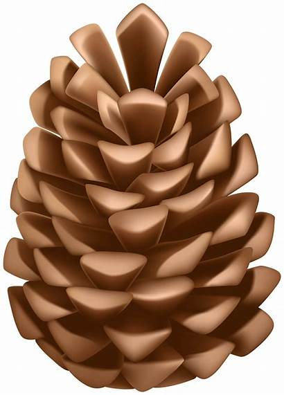 Pine Cone Clip Clipart Fall Transparent Yopriceville