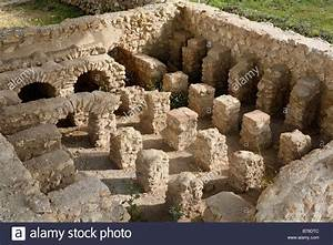 Roman Excavations  Roman Museum Flavia Solva Near Leibnitz  Styria Stock Photo  Royalty Free