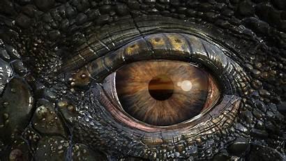 Background Prehistoric Crocodile 3d Close Imax Journey