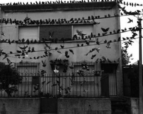 La Casa Poeta by Poema Quot La Casa Abandonada Quot Por C 225 Lamo Azul Poematrix