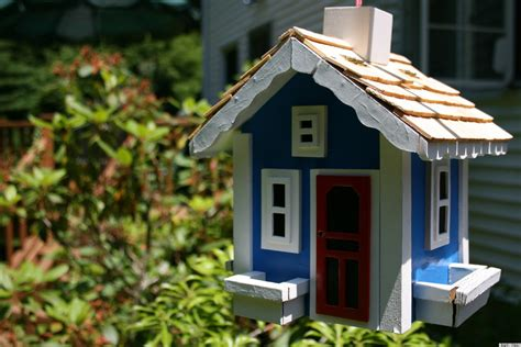 amazing birdhouses      home   huffpost