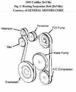 1995 cadillac deville routing serpentine drive belt need With 1993 cadillac deville serpentine belt routing and timing belt diagrams