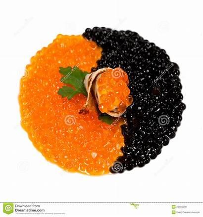 Caviar Kaviar Rouge Noir Schwarzer Negro Roter