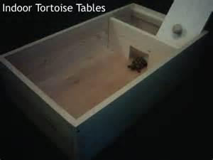 tortoise design tortoise house designs house decor