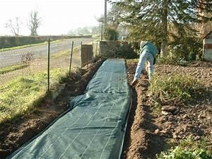 Toile Pour Jardin : bache de jardin pour plantation bache pour massif chromeleon ~ Teatrodelosmanantiales.com Idées de Décoration