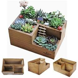 wooden succulent planter boxes for indoor house miniature