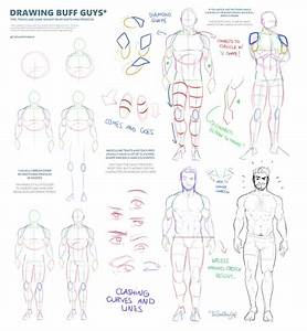 Male Anatomy Tips By Thedamn
