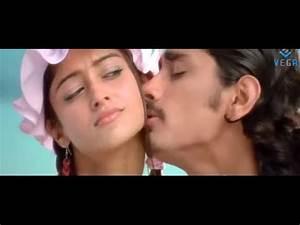 Siddharth's Aata Movie Songs : Ninu Choostunte Song - YouTube