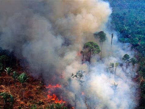 amazon fires whats  happening