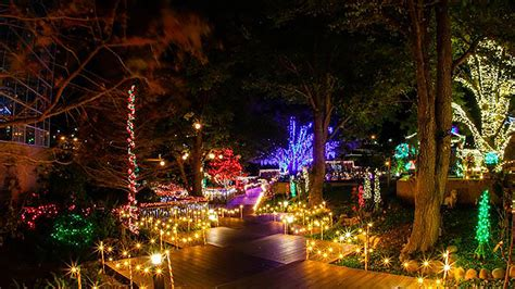 civic center lake charles la christmas lights infolakes co