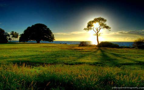 Most Beautiful Landscape  Best Background Wallpaper