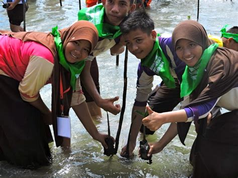 rusak parah bersama sama selamatkan mangrove pohuwato