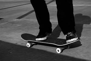 Skateboard repels cougar attack | Q13 FOX News