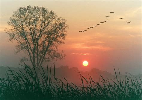 edna st vincent millay autumn daybreak golempoem