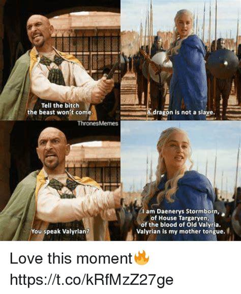 Bitches Love Meme - 25 best memes about speak valyrian speak valyrian memes