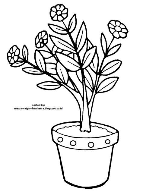 koleksi terbaru 47 gambar sketsa untuk vas bunga