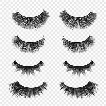 Vector Eyelashes False Eyes Vectors Premium Graphic