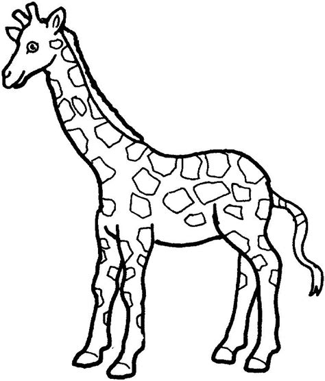 simple giraffe outline print   color pictures   variety  animals applique