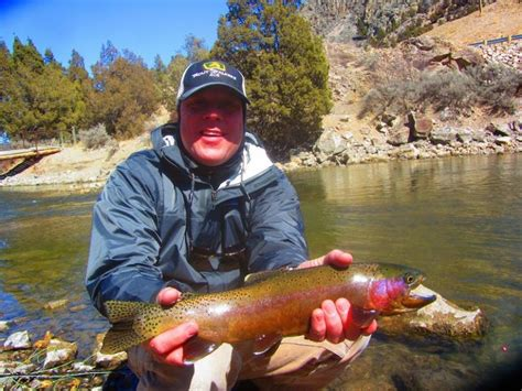 ruby river fly fishing montana trout stalkers