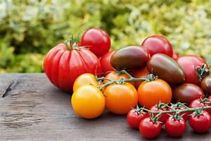 Tomaten Balkon Kübel : tomaten zuhause anbauen blog ~ Yasmunasinghe.com Haus und Dekorationen