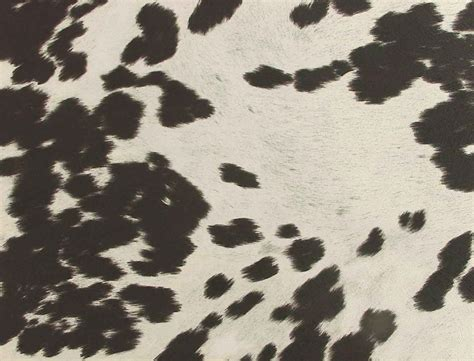 Faux Cowhide Fabric For Upholstery by Southwestern Fabric Black Cow Print