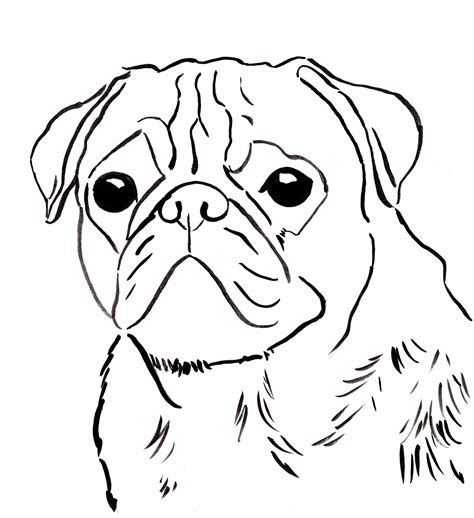 Sad Puppy Face Drawing At Getdrawingscom Free For