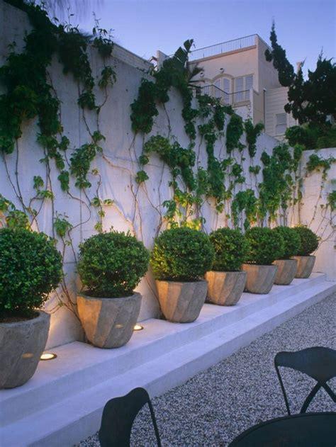 Jardín Sin Césped Ideas Para Diseñar Tu Patio  El Blog