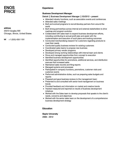 Business Development Manager Resume Summary by Business Development Director Resume Sales Director