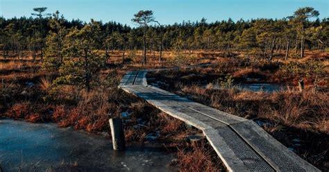 Latvijas skaistāko dabas taku karte un idejas, kurp doties brīvdienās - DELFI