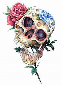 love drawing art flowers skull floral Anatomy roses sugar ...