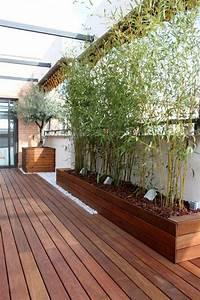Moderner Sichtschutz Für Terrasse : sichtschutz pflanzk bel sichtsch tze k nnen auch ~ Michelbontemps.com Haus und Dekorationen