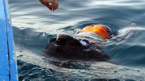 Boat Sinking Libya by Scores Feared Dead After Boat Sinks Libya Italy News