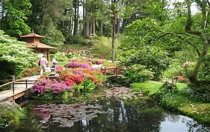 Japanese Garden Wallpapers Gardens Flower Japan Gardening