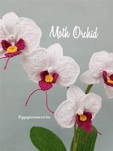 Crochet Moth Orchid Pattern Crochet Flower Pattern