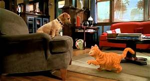 GARFIELD - IL FILM: Garfield vs Odie - YouTube