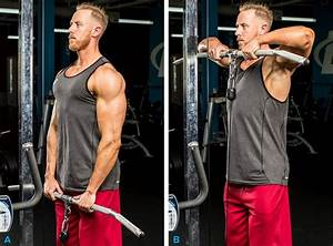 Our 7 Best Routines For Bigger Delts