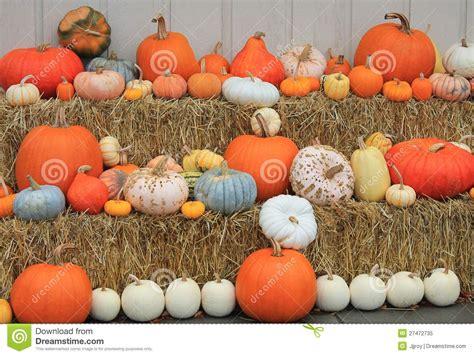 vari 233 t 233 s de courge et de potiron d automne photo libre de droits image 27472735