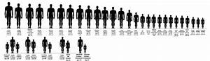 Iisjah U0026 39 S Blog  U2014 Oc Height Chart And Comparison By Iisjah I