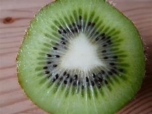 Kiwi cut fruit Free stock photos in JPEG (.jpg) 3264x2448 ...