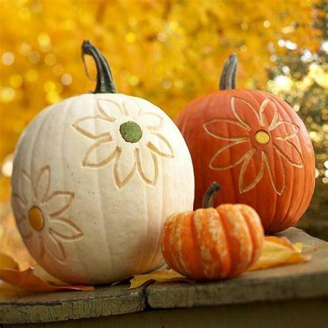 pretty pumpkins for fall super fast pumpkins with no carve designs