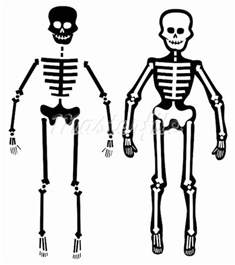 free basic resume outline best photos of easy to draw human skeleton human skeleton drawing how to draw skeleton and