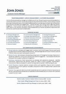 Customer Service Professional Resume Examples Australia