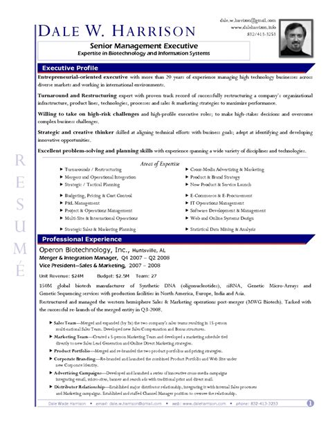resume template business analyst word expert as