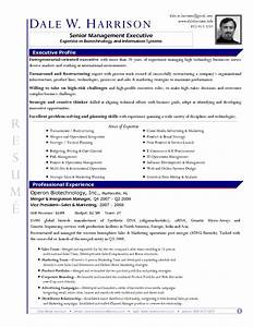 Professional resume word template resume and cover for Business resume template word