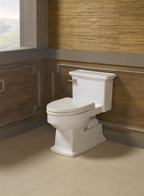 Bathroom Toilets and Toilet Brands   Immerse St. Louis