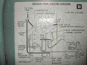 Wiring Diagram For A 1981 Chevy Luv Diesel  U2013 Readingrat Net