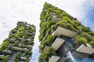 Sichtschutz Pflanzen Pflegeleicht : der balkon mit privatsph re sichtschutz mit pflanzen ~ A.2002-acura-tl-radio.info Haus und Dekorationen